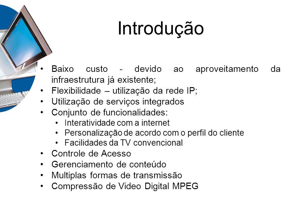 Introdução Baixo custo - devido ao aproveitamento da infraestrutura já existente; Flexibilidade – utilização da rede IP;