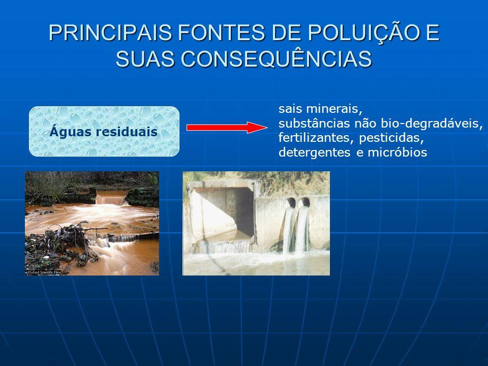 PRINCIPAIS FONTES DE POLUIÇÃO E SUAS CONSEQUÊNCIAS