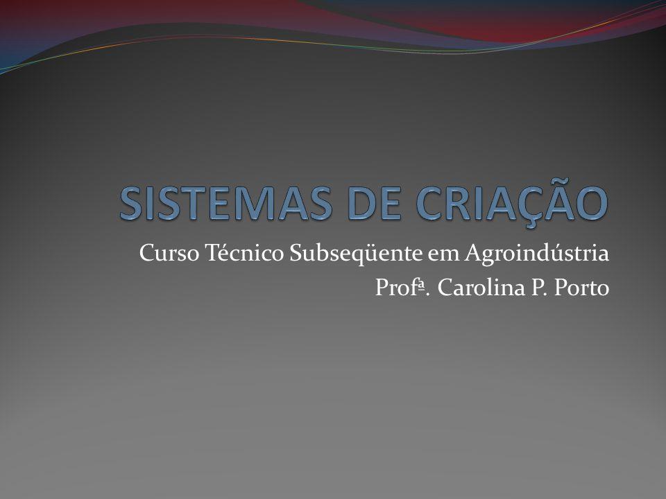 Curso Técnico Subseqüente em Agroindústria Profª. Carolina P. Porto