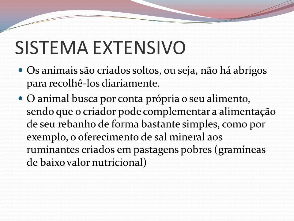 SISTEMA EXTENSIVOOs animais são criados soltos, ou seja, não há abrigos para recolhê-los diariamente.