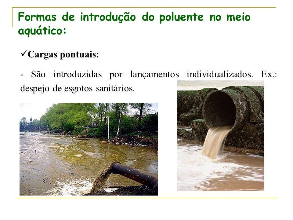 Formas de introdução do poluente no meio aquático: