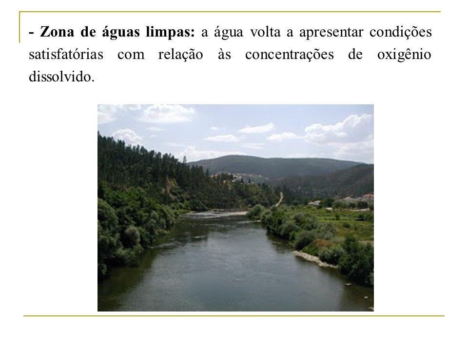 - Zona de águas limpas: a água volta a apresentar condições satisfatórias com relação às concentrações de oxigênio dissolvido.