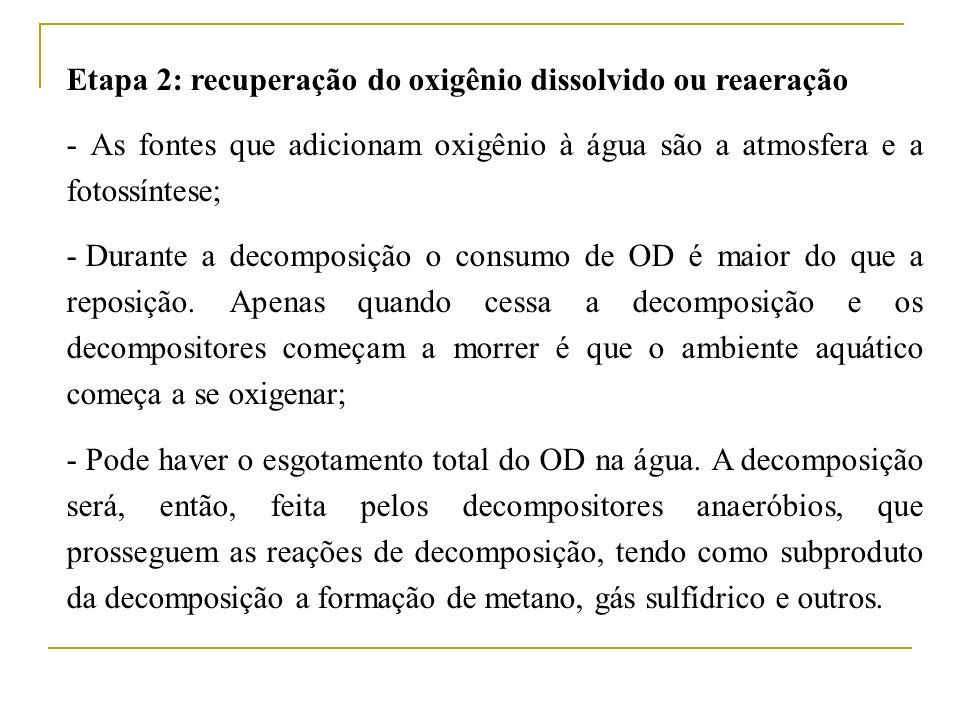 Etapa 2: recuperação do oxigênio dissolvido ou reaeração