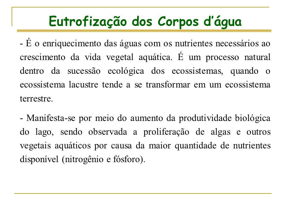 Eutrofização dos Corpos d'água