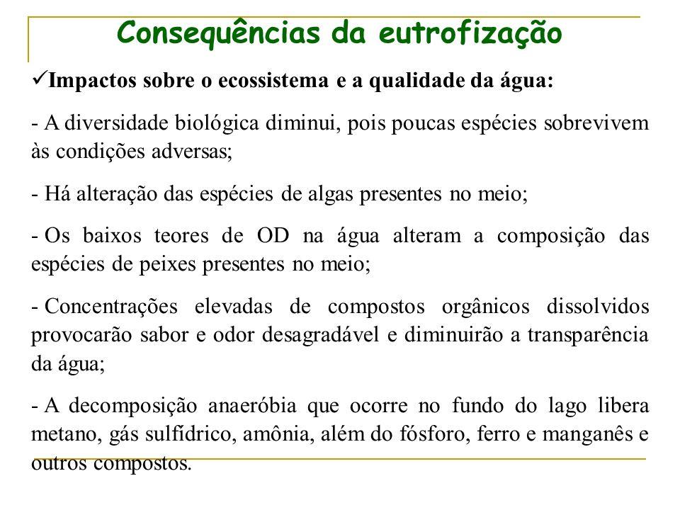 Consequências da eutrofização
