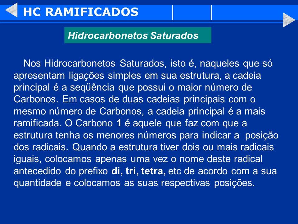 HC RAMIFICADOS Hidrocarbonetos Saturados