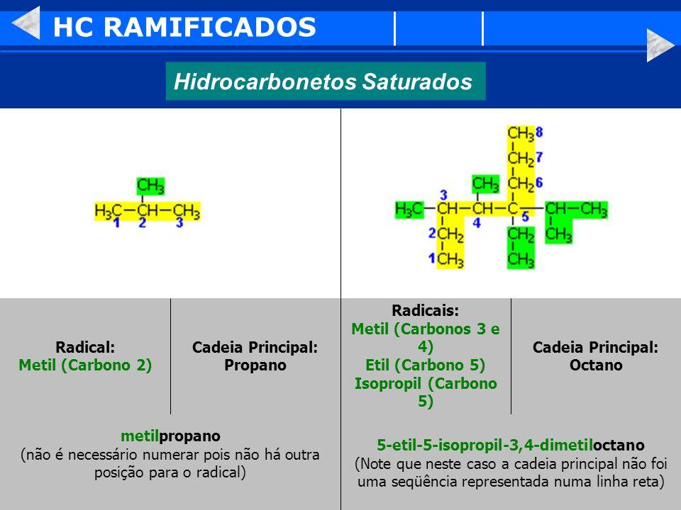 HC RAMIFICADOS Hidrocarbonetos Saturados Radical: Metil (Carbono 2)