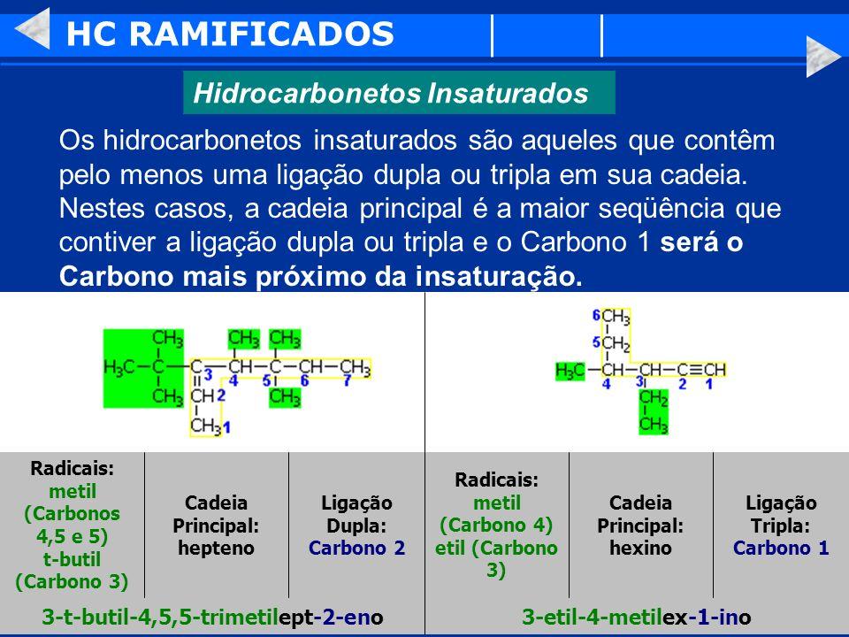 HC RAMIFICADOS Hidrocarbonetos Insaturados