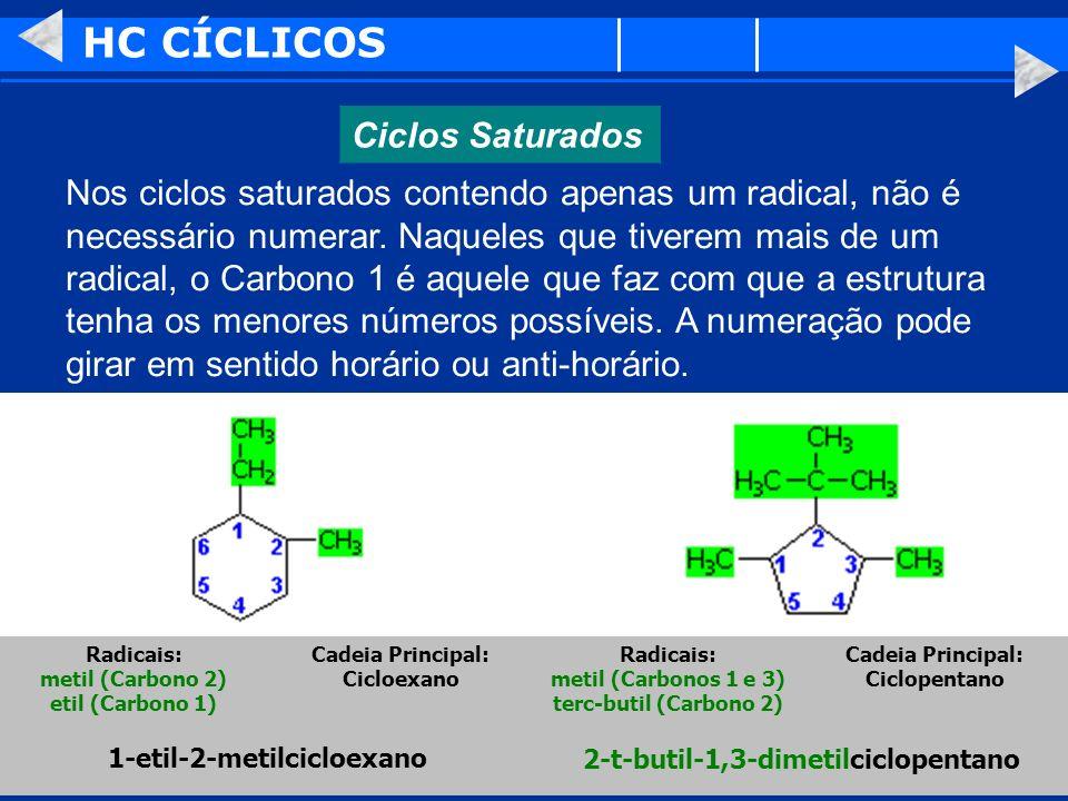 HC CÍCLICOS Ciclos Saturados