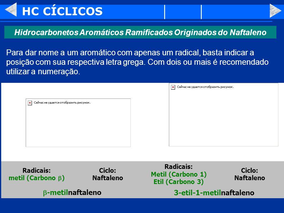 HC CÍCLICOS Hidrocarbonetos Aromáticos Ramificados Originados do Naftaleno.