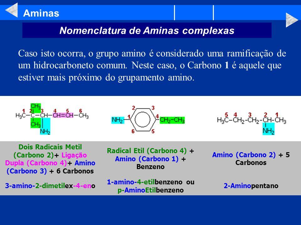 Nomenclatura de Aminas complexas