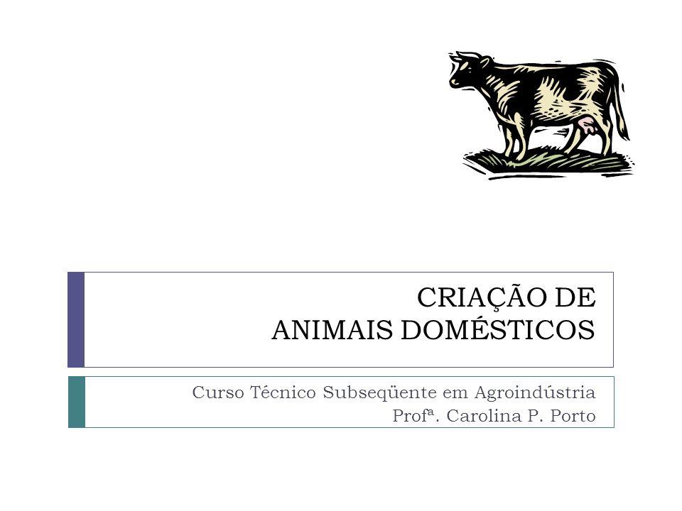 CRIAÇÃO DE ANIMAIS DOMÉSTICOS