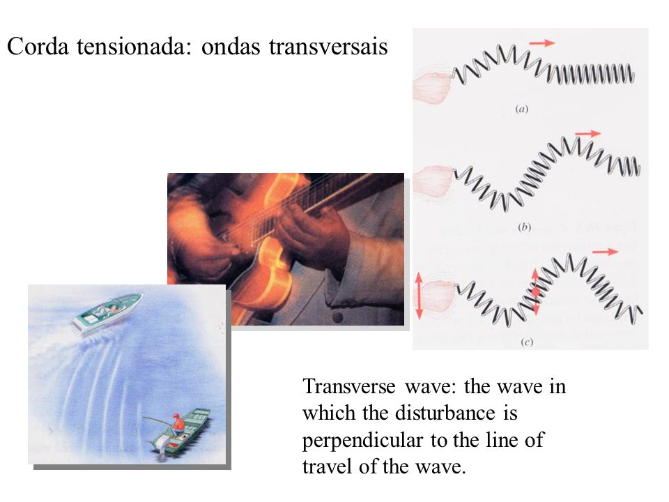Corda tensionada: ondas transversais