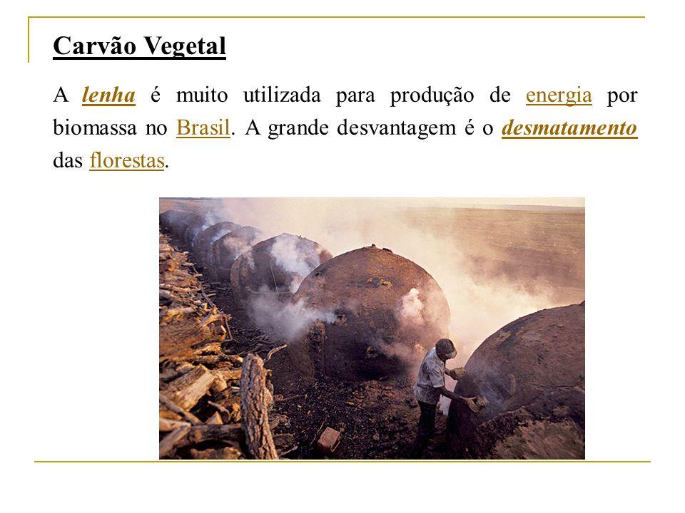 Carvão Vegetal A lenha é muito utilizada para produção de energia por biomassa no Brasil.