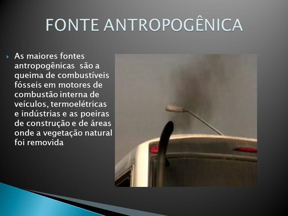 FONTE ANTROPOGÊNICA