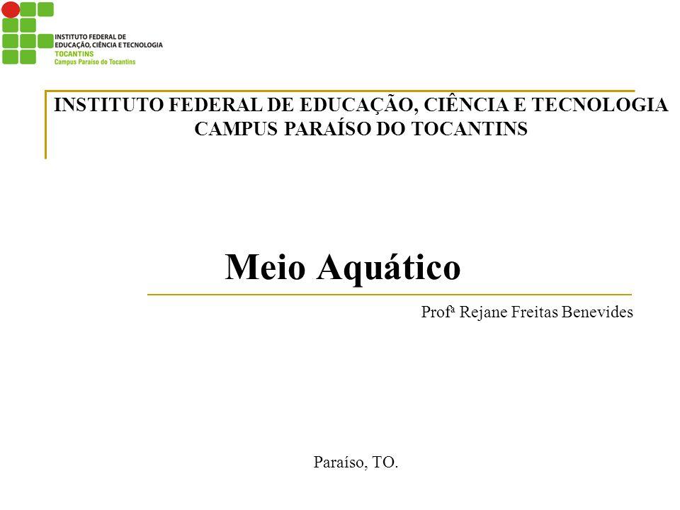 Profa Rejane Freitas Benevides
