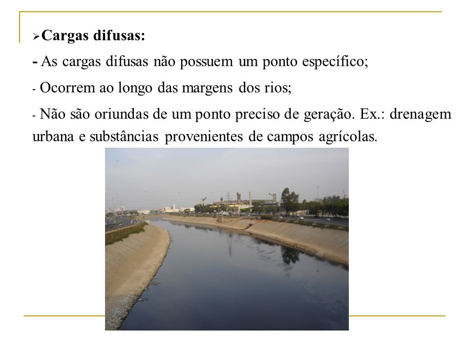 Cargas difusas:- As cargas difusas não possuem um ponto específico; Ocorrem ao longo das margens dos rios;