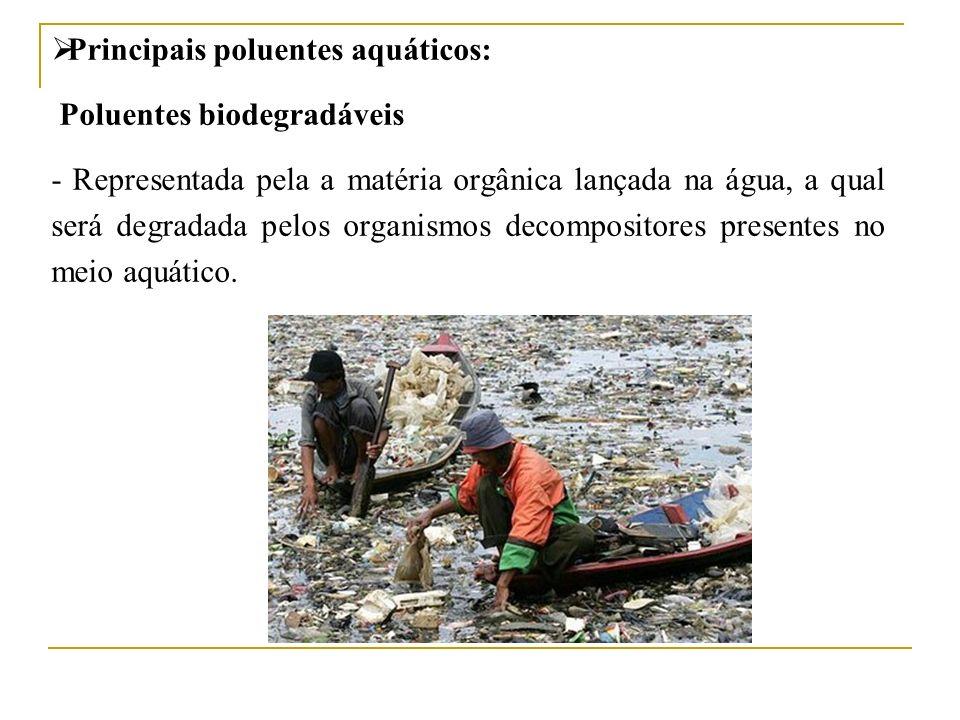 Principais poluentes aquáticos: