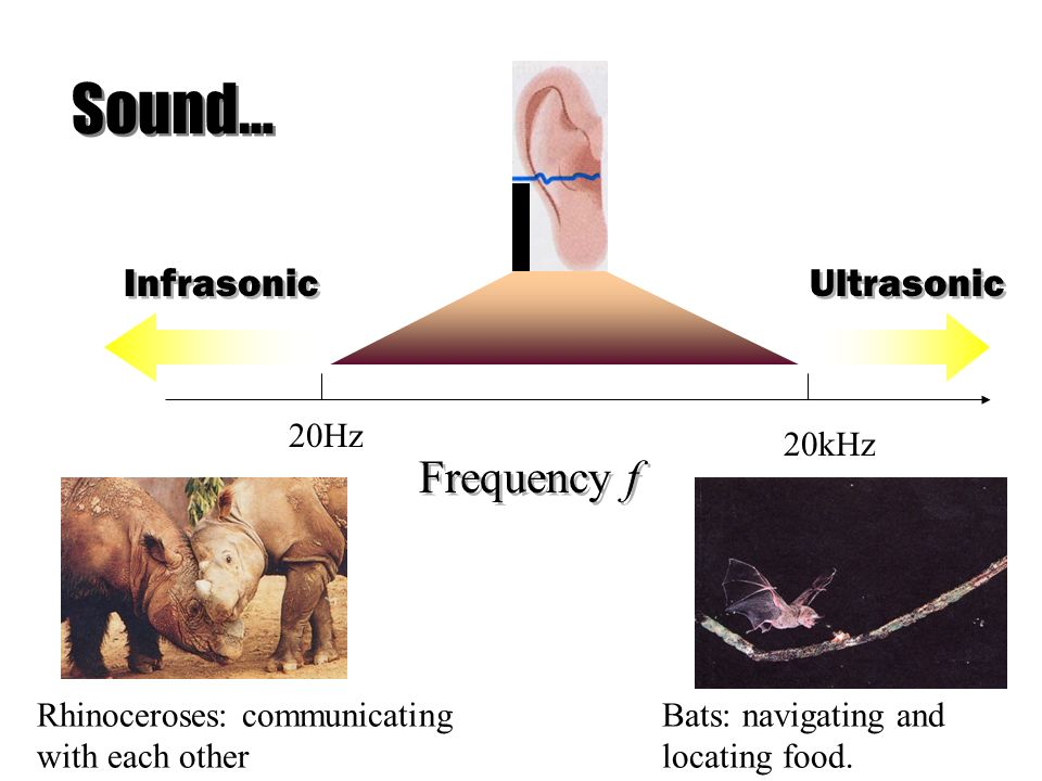 Sound… Frequency f Infrasonic Ultrasonic 20Hz 20kHz