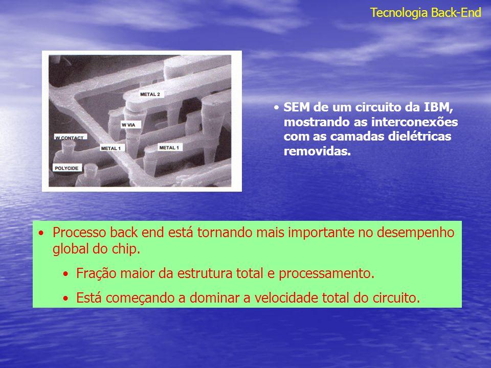 Fração maior da estrutura total e processamento.
