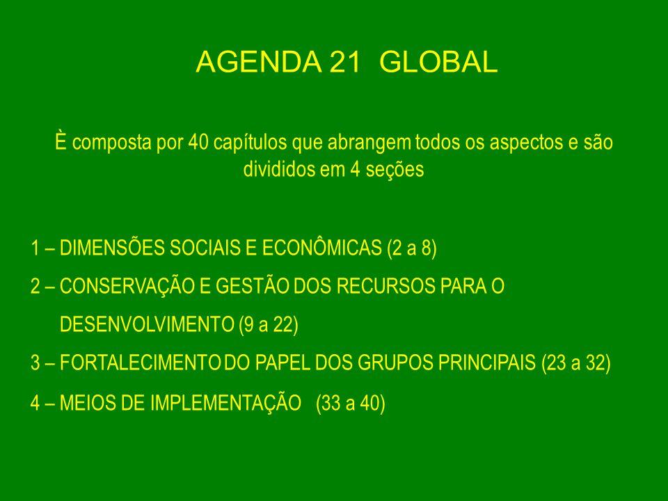 AGENDA 21 GLOBAL È composta por 40 capítulos que abrangem todos os aspectos e são divididos em 4 seções.