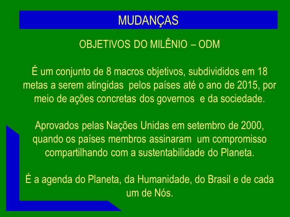 MUDANÇAS OBJETIVOS DO MILÊNIO – ODM