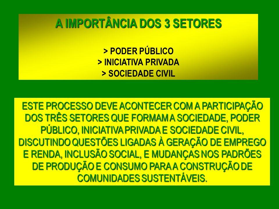 A IMPORTÂNCIA DOS 3 SETORES > INICIATIVA PRIVADA