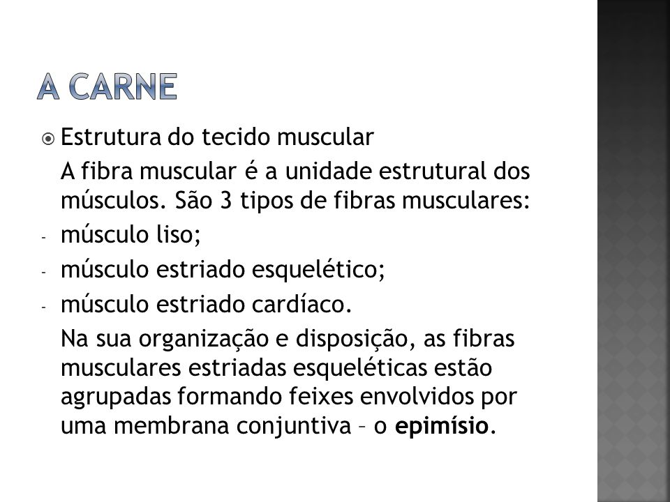A carne Estrutura do tecido muscular