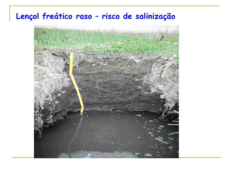 Lençol freático raso – risco de salinização