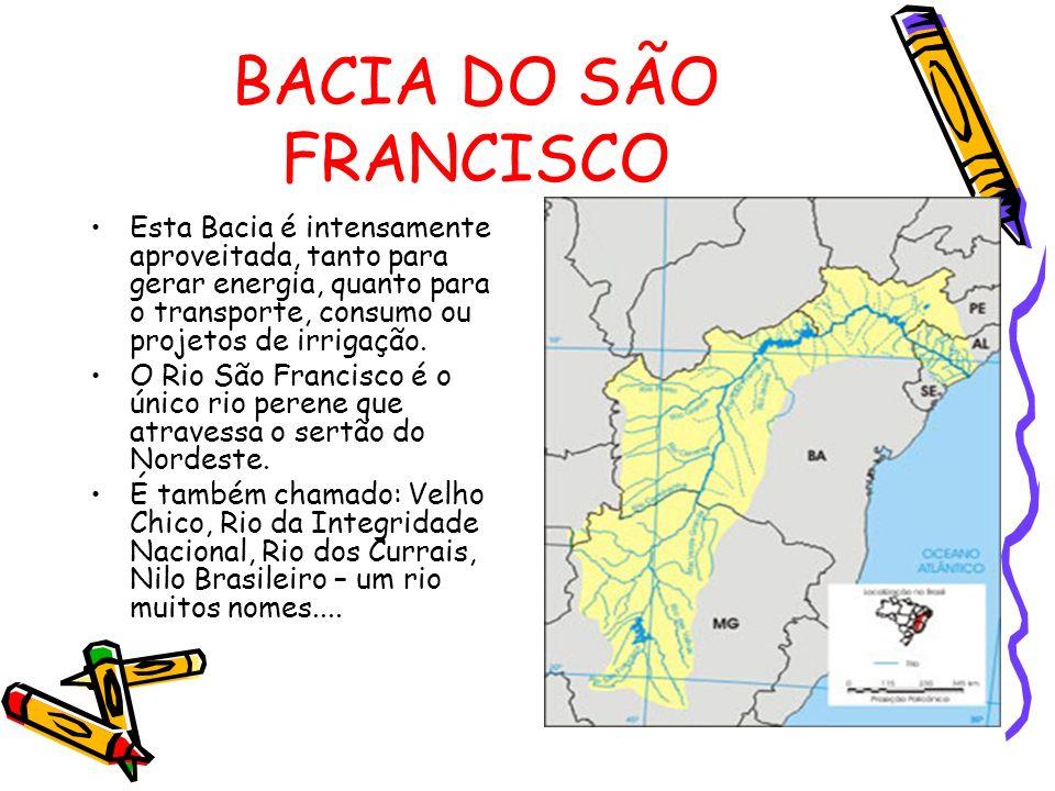 BACIA DO SÃO FRANCISCO Esta Bacia é intensamente aproveitada, tanto para gerar energia, quanto para o transporte, consumo ou projetos de irrigação.