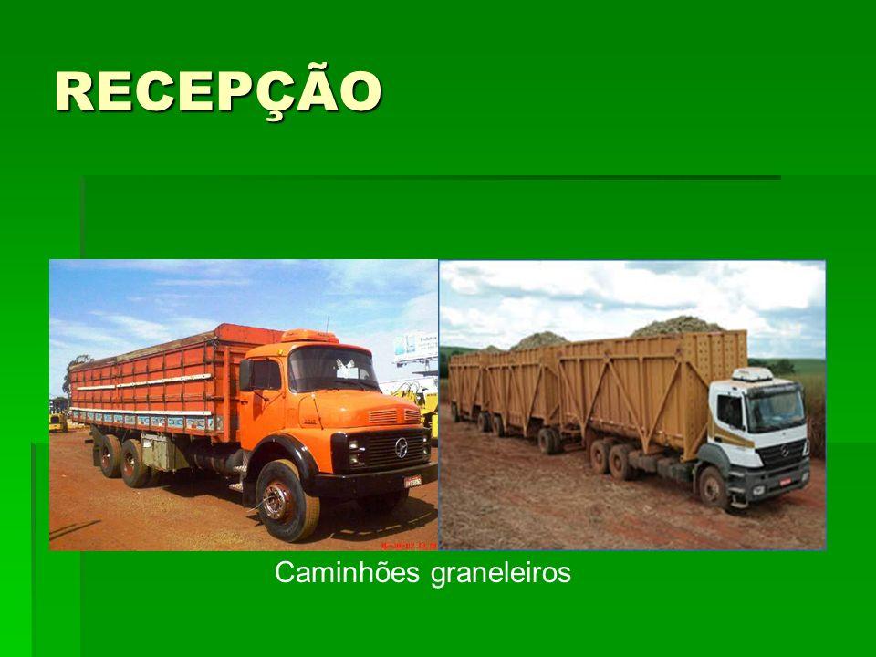 RECEPÇÃO Caminhões graneleiros