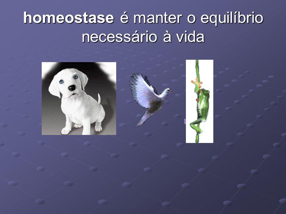 homeostase é manter o equilíbrio necessário à vida