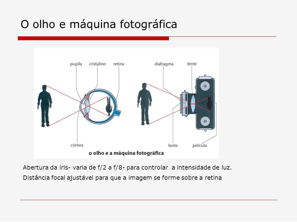 O olho e máquina fotográfica