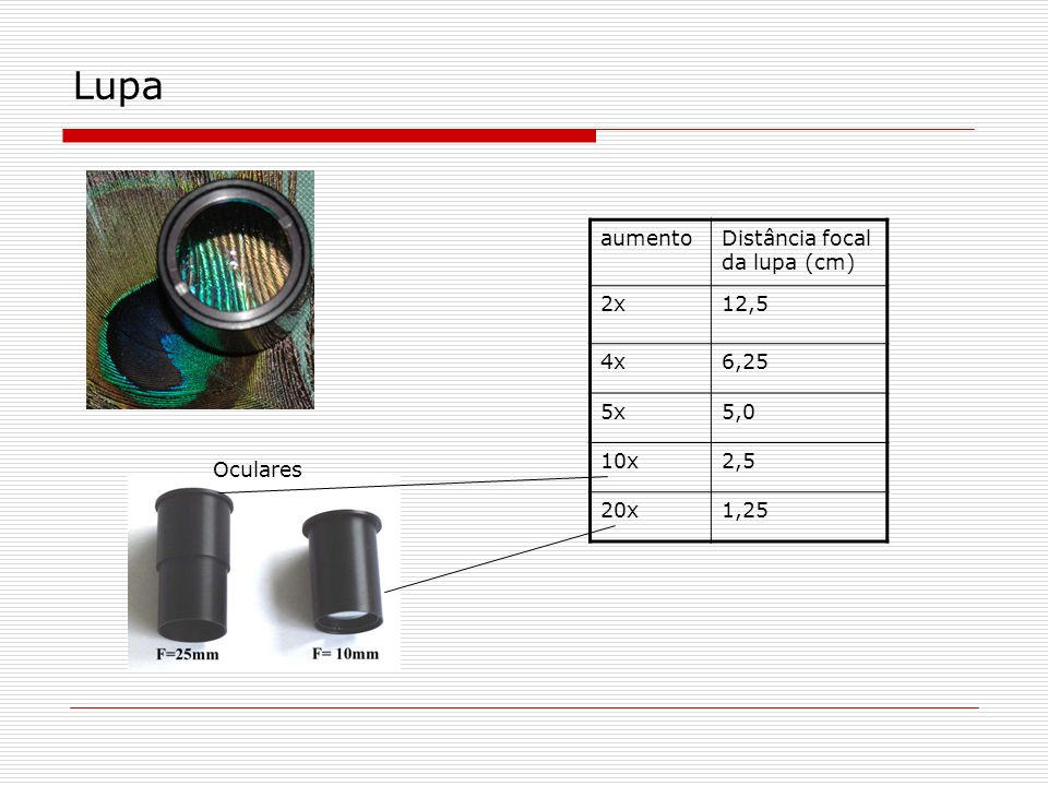 Lupa aumento Distância focal da lupa (cm) 2x 12,5 4x 6,25 5x 5,0 10x