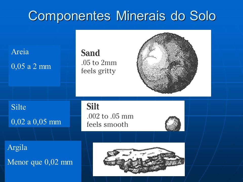 Componentes Minerais do Solo