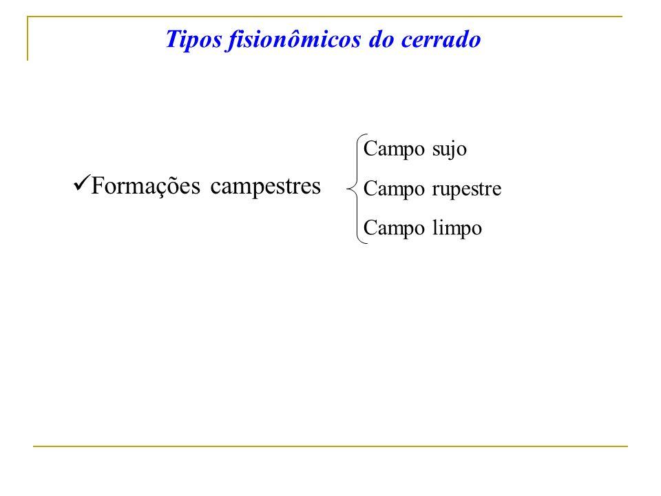 Tipos fisionômicos do cerrado