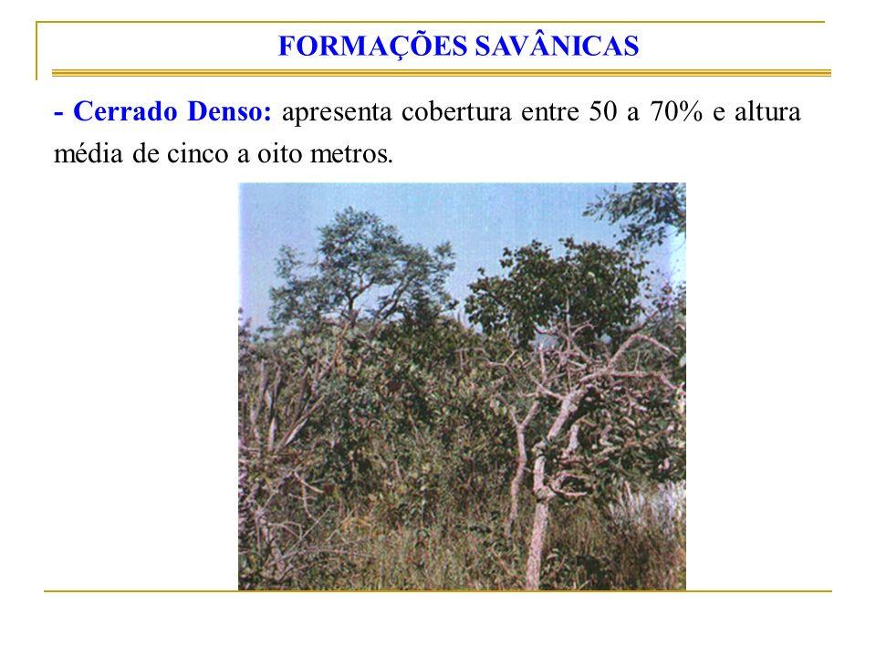 FORMAÇÕES SAVÂNICAS - Cerrado Denso: apresenta cobertura entre 50 a 70% e altura média de cinco a oito metros.