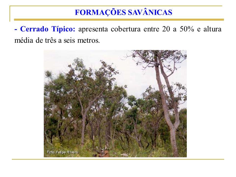 FORMAÇÕES SAVÂNICAS - Cerrado Típico: apresenta cobertura entre 20 a 50% e altura média de três a seis metros.