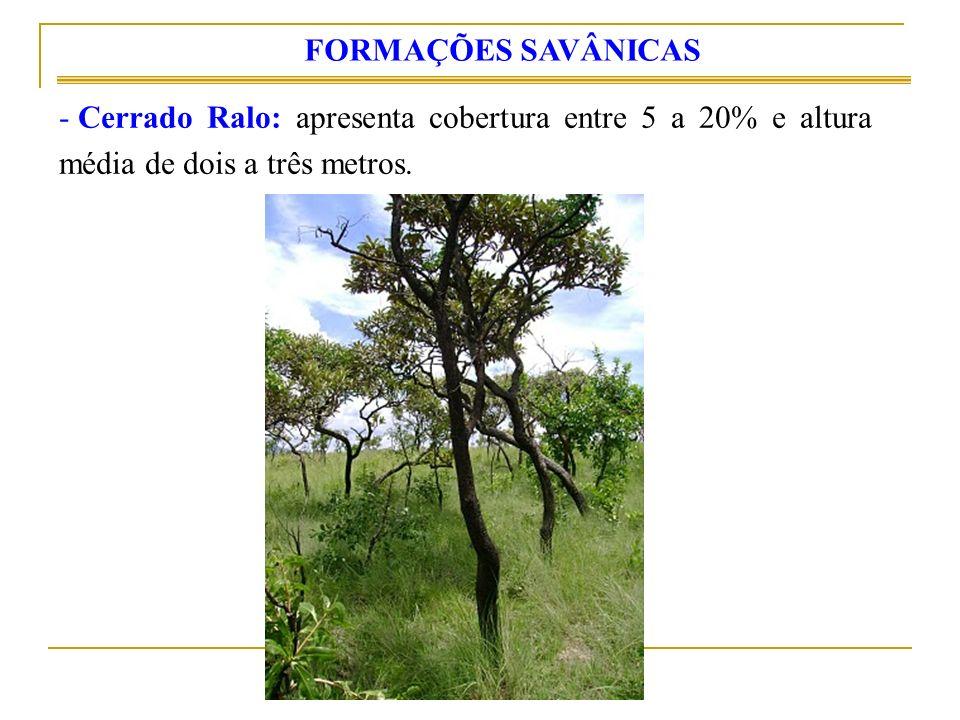 FORMAÇÕES SAVÂNICAS Cerrado Ralo: apresenta cobertura entre 5 a 20% e altura média de dois a três metros.