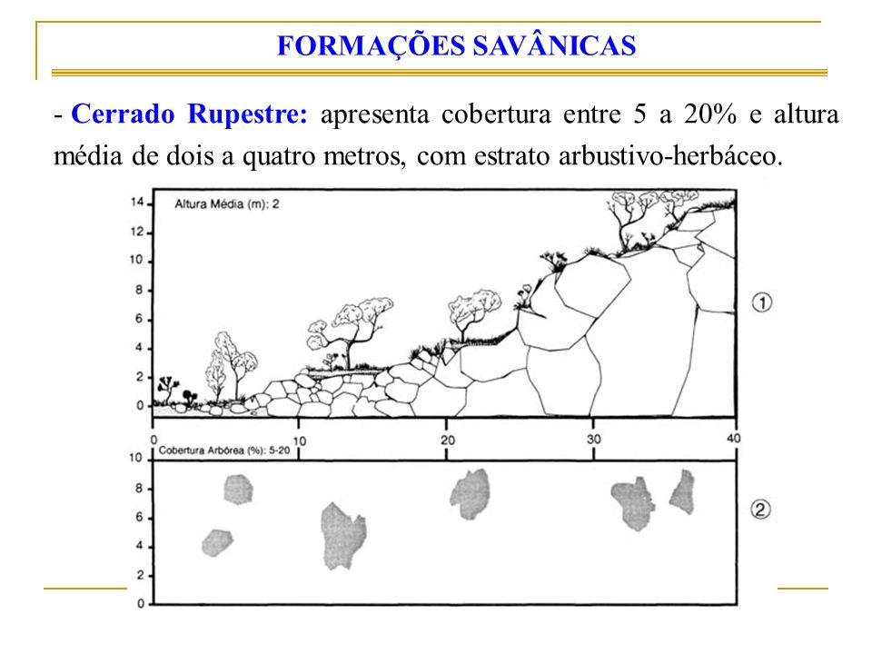 FORMAÇÕES SAVÂNICAS Cerrado Rupestre: apresenta cobertura entre 5 a 20% e altura média de dois a quatro metros, com estrato arbustivo-herbáceo.