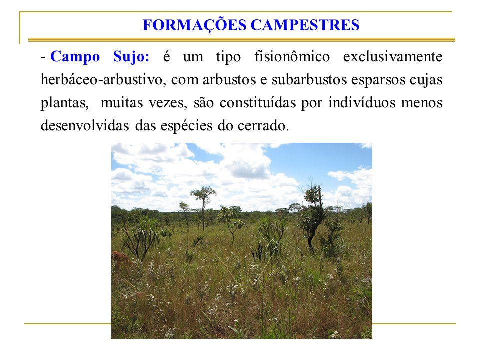 FORMAÇÕES CAMPESTRES