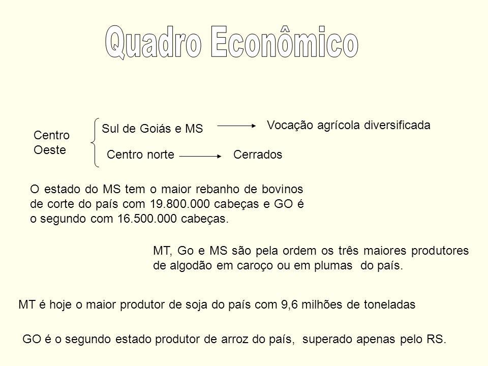 Quadro Econômico Vocação agrícola diversificada Sul de Goiás e MS