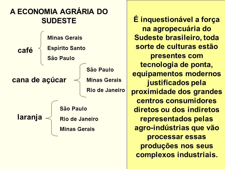 A ECONOMIA AGRÁRIA DO SUDESTE