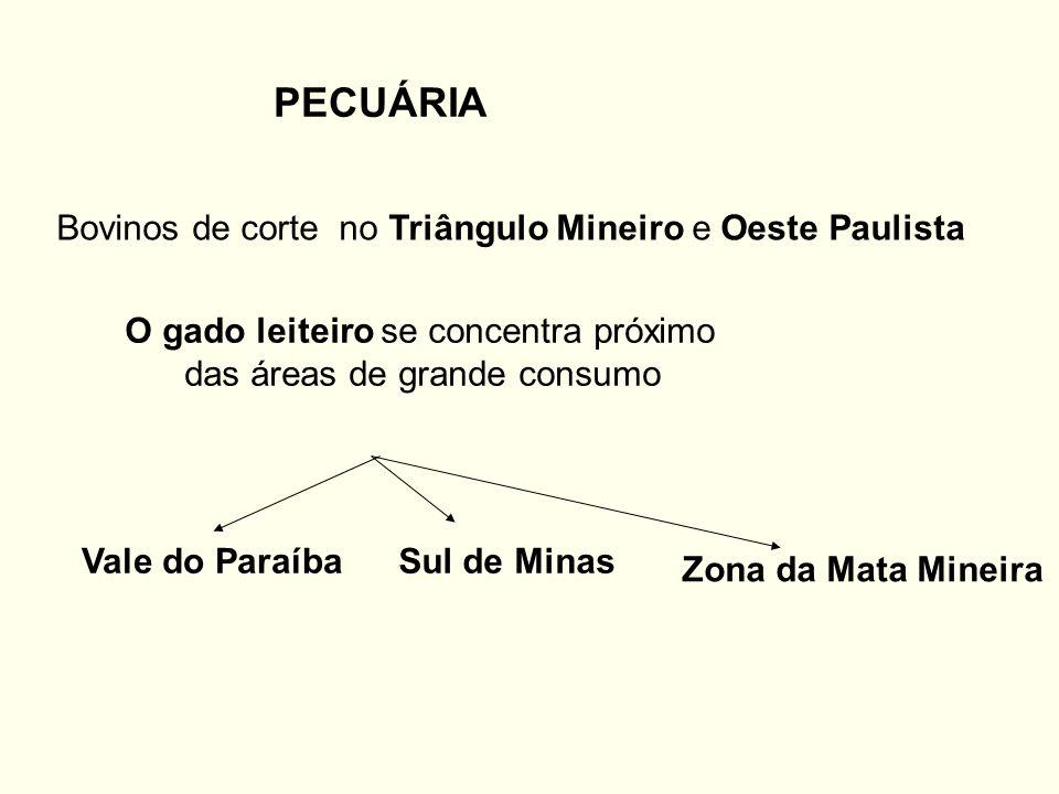 PECUÁRIA Bovinos de corte no Triângulo Mineiro e Oeste Paulista