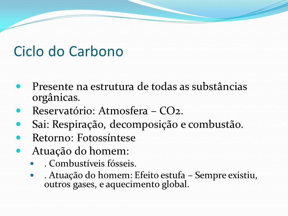Ciclo do Carbono Presente na estrutura de todas as substâncias orgânicas. Reservatório: Atmosfera – CO2.