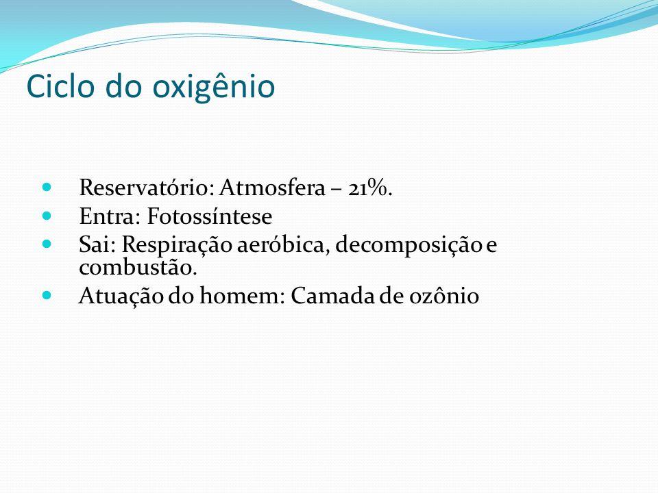 Ciclo do oxigênio Reservatório: Atmosfera – 21%. Entra: Fotossíntese
