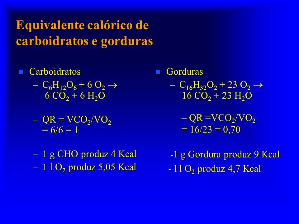 Equivalente calórico de carboidratos e gorduras