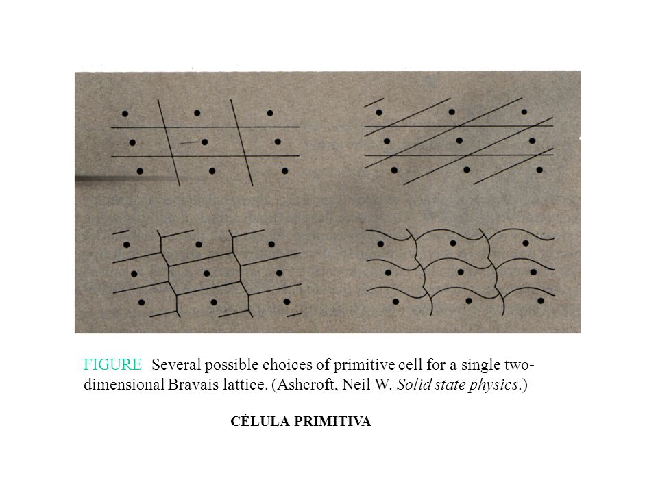 FIGURE Several possible choices of primitive cell for a single two-dimensional Bravais lattice. (Ashcroft, Neil W. Solid state physics.)