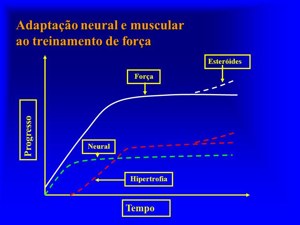 Adaptação neural e muscular ao treinamento de força