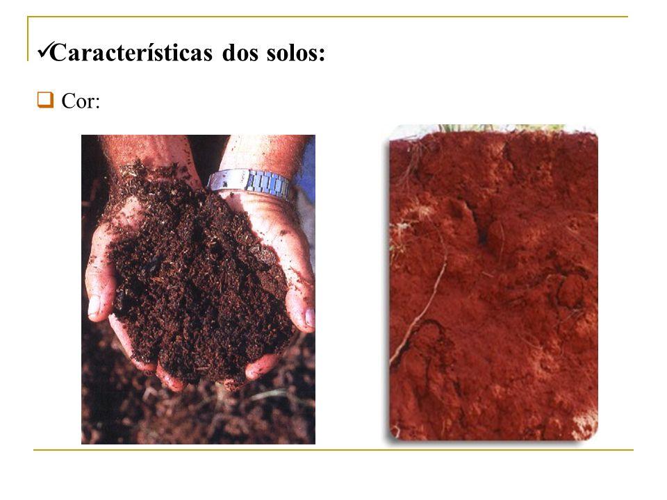 Características dos solos: